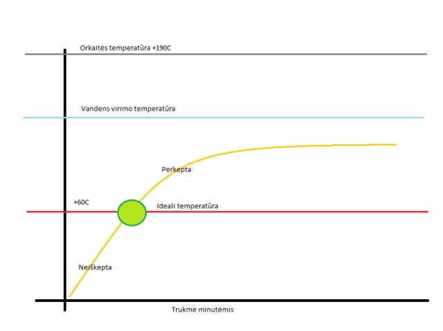 Temperatūrinis grafikas