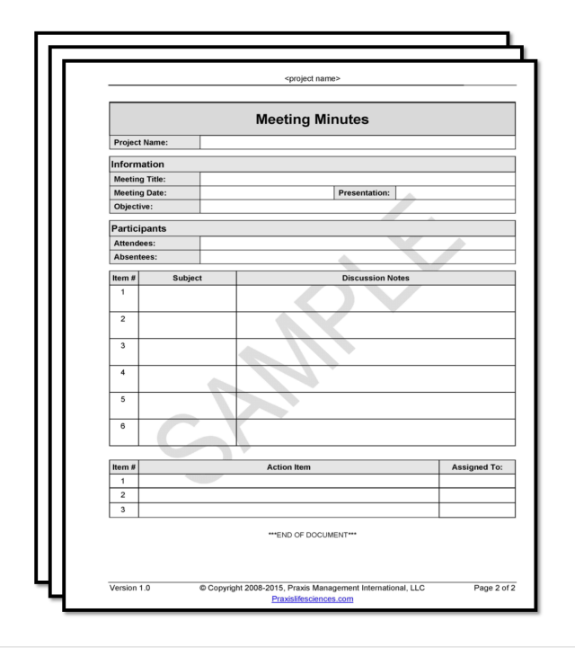 Llc Meeting Minutes Template - FREE DOWNLOAD
