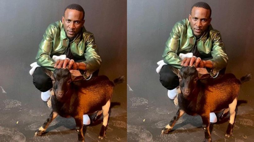 Fans react as BBNaija Omashola storms internet with his favorite pet, a goat