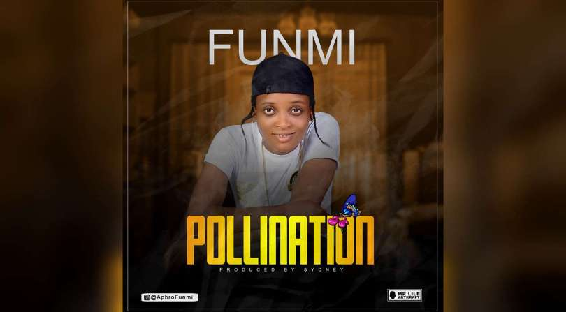 NEW MUSIC: Funmi – Pollination