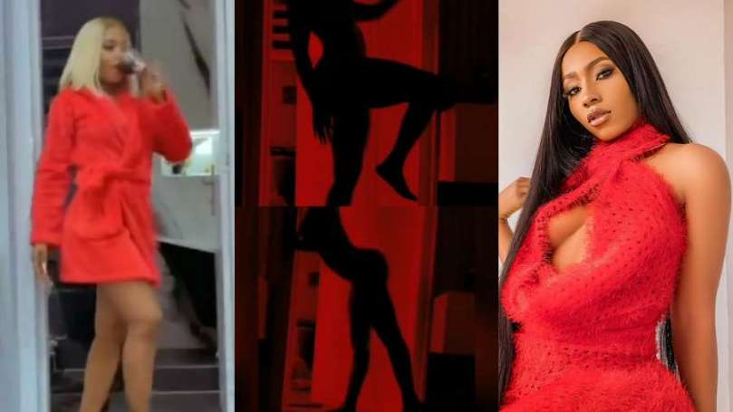 'I've never been naked' – BBNaija's Mercy Eke denies after fan complains about her Silhouette Challenge (video)
