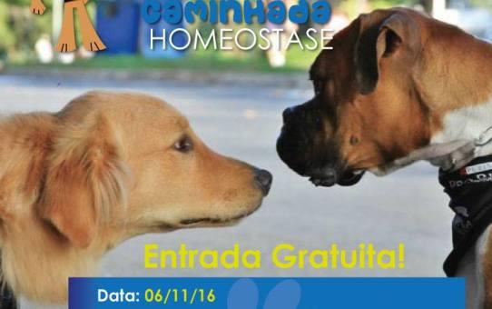 PET CAMINHADA HOMEOSTASE -  Vinhedo - 06 Novembro