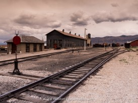 Railroads and mining are intimately intertwined in Nevada history.