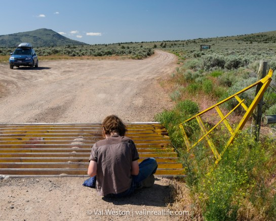 Somewhere in Oregon where a cattle guard proved to be a great hiding spot for a geocache.