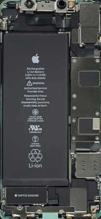 The internals of an iPhone 11.