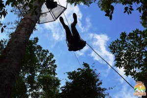 Canopy Tour (9)