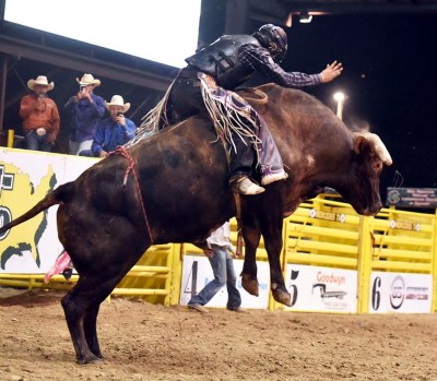 Rodeos and horse shows are mainstays at the Livestock Show. (Courtesy RGVLS)