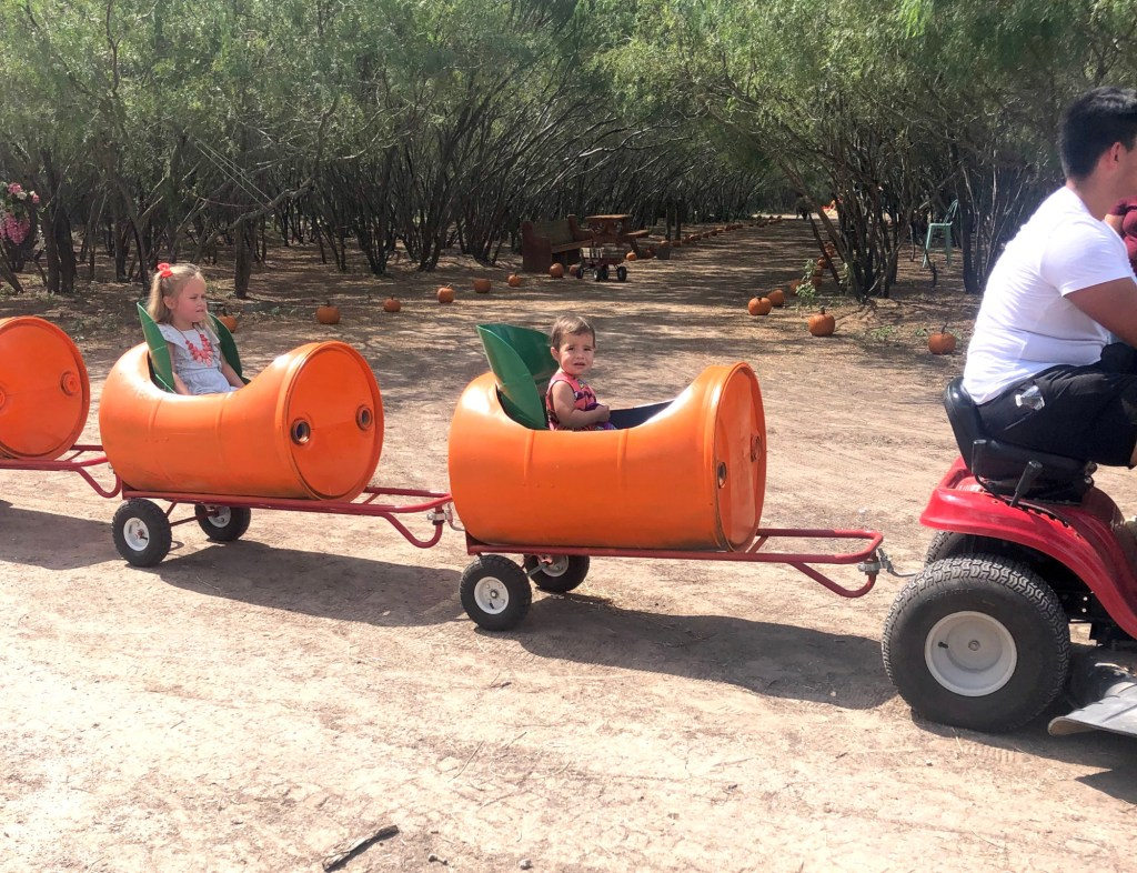 Kids can ride on the barrel ride pulled by tractor around the property.