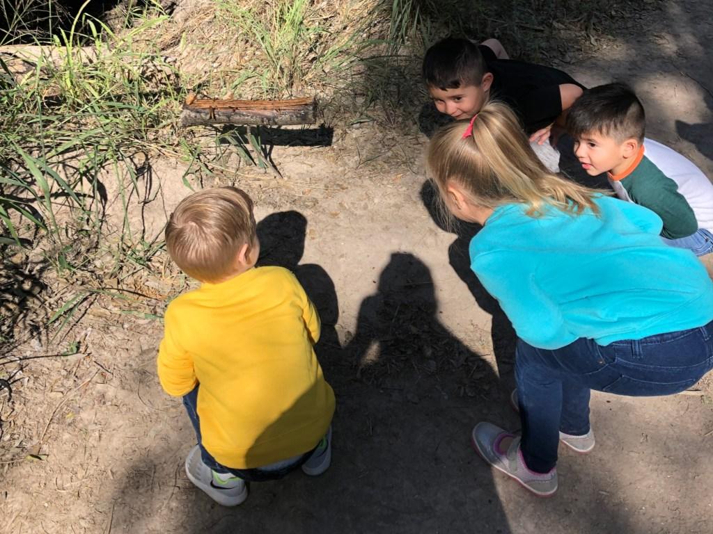 Kids view butterflies on a feeding log in the Hackberry Trail.