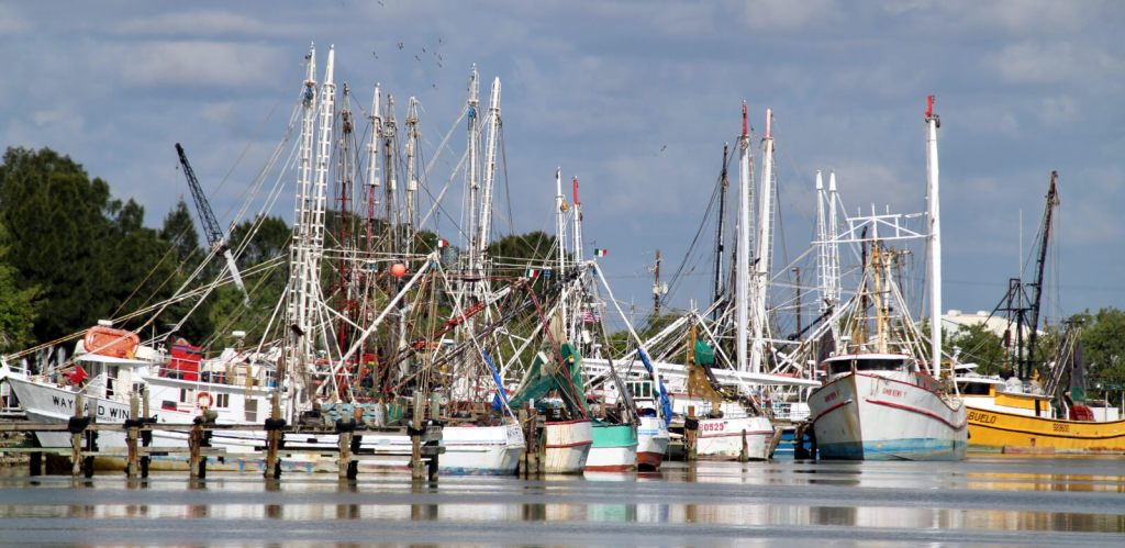 Shrimp boats make up a formidable fleet in the channel leading to Port of Brownsville.