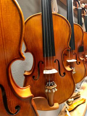 A collection of violins at Armonia Music.
