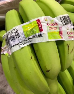 Mexican bananas ship daily from the facility.