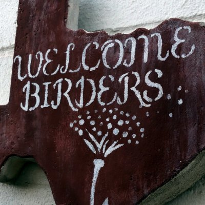 Birders are always welcome at the Alamo Inn.