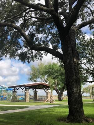 Harlingen's new destination Park on Fair Park Boulevard features many long-standing oak trees.