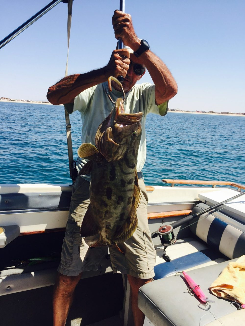 Tom Giljum, avid VGA golfer and avid fisherman has acquired a Nirvana of sorts. He golfs with VGA on many occasions all the while living in Rocky Point in Mexico, where he catches fish like the Grouper shown. All this a mile from his home in Mexico. Does it get any better than this?