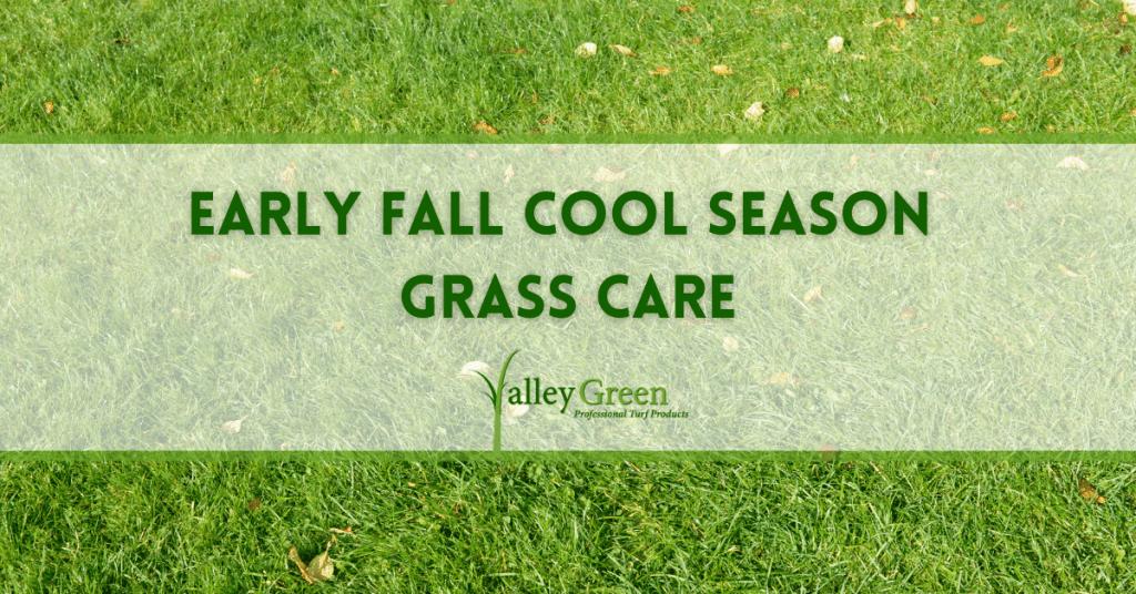 Early fall cool season grass care