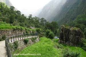 Reaching Bhundar Village on the way to valley of flowers