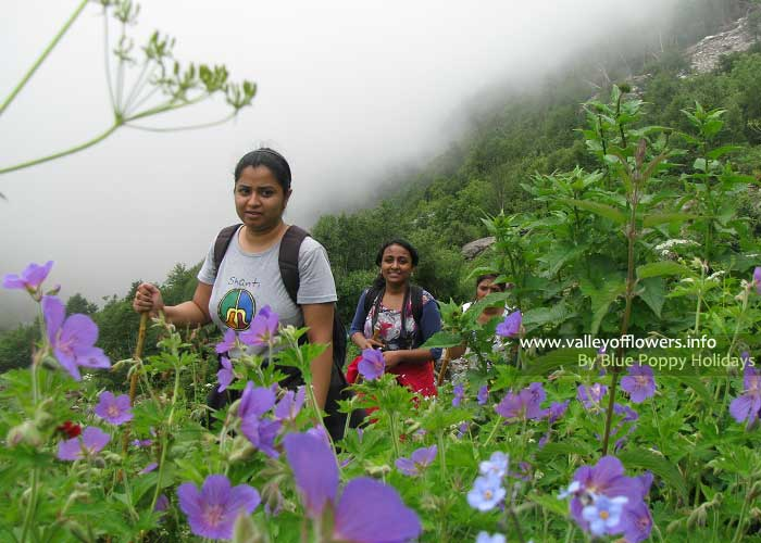 Valley of flowers trekking tour - Group 9th July, 2012