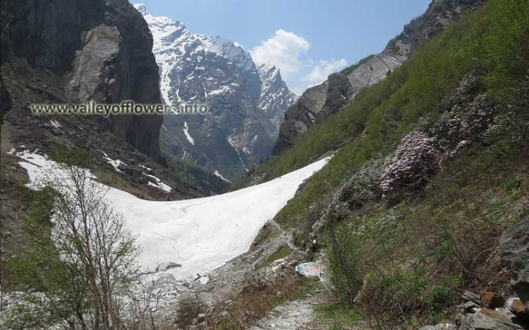 Another view of beautiful Glacier on the way to Valley of Flowers.