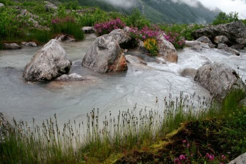 Beautiful picture of the valley of flowers, it is Pushpawati River bed