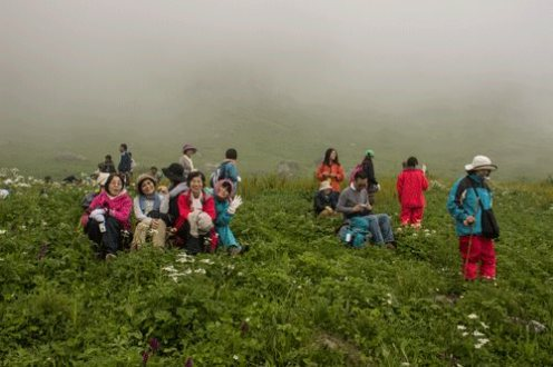 Japanese in the valley of flowers