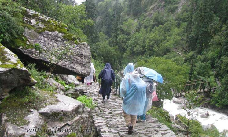 Just after passing through the dense forest near the entry gate of the valley.