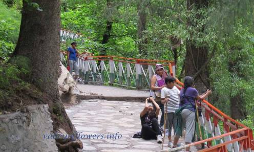 Newly constructed trek between Govindghat and Ghangaria.