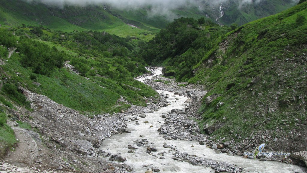 Pushpawati river in the valley of flowers