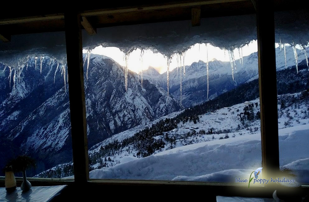 View from restaurant at Blue Poppy Resorts Auli