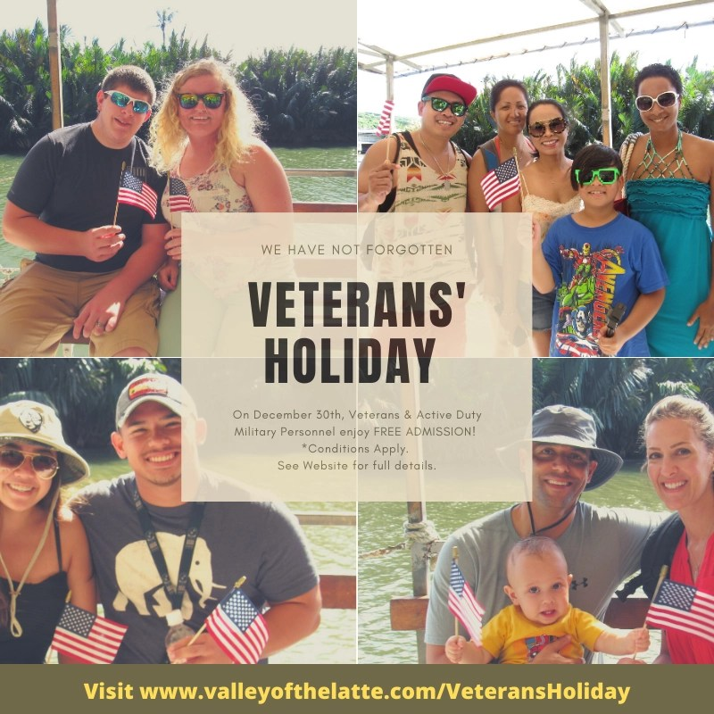 veterans' holiday