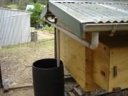 Frank - Rainwater harvesting