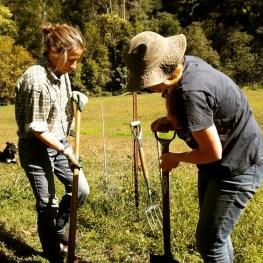 Poppy - wallaby burial!