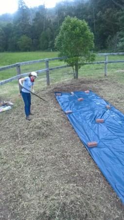 Raking off grass residue