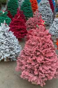 enchanted christmas trees