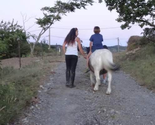 promenade à poney : le bonheur des enfants !