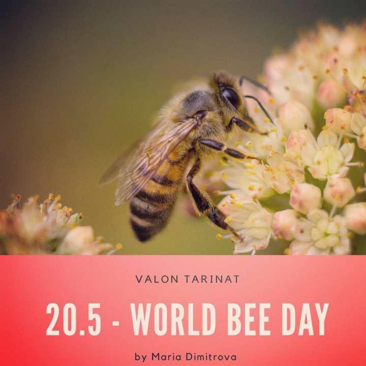 World Bee Day - Kansainvälinen mehiläispäivä