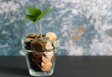 Dinero en un vaso con una planta