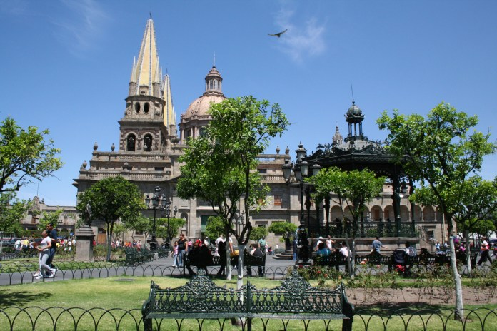 Reverdecen centro de Guadalajara con proyecto de reforestación endémica