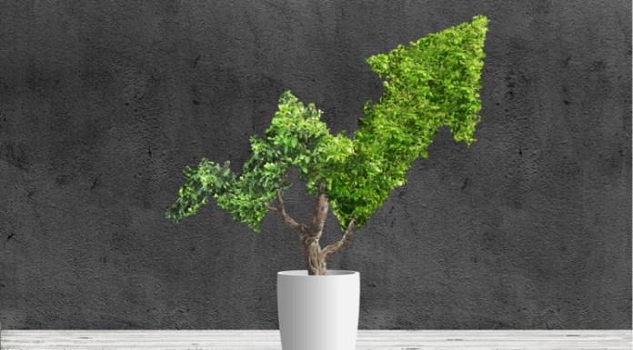 Recuperación económica tras COVID-19 será verde