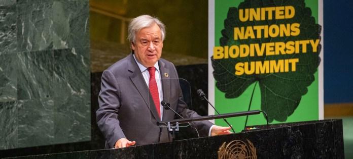 acuerdo mundial para proteger la biodiversidad y evitar otra pandemia
