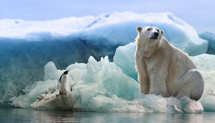 Se abre uno de los mayores agujeros de ozono en la Antártida de la última década