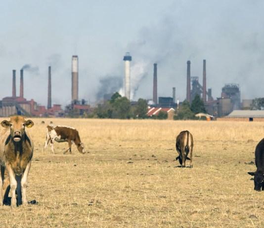 Las concentraciones de CO2 siguen en niveles récord a pesar de la pandemia