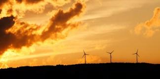 CEMEX lidera en energía limpia con enfoque en fuentes de energía renovables