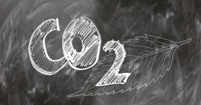 Stripe Climate: primera herramienta de compra de eliminación de carbono a gran escala en el mundo