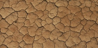 Las sequías nos afectan a todos