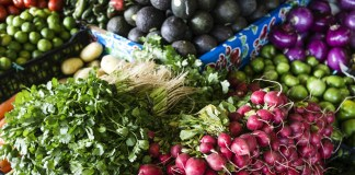 Agricultura como fuente de empleo en Latinoamérica