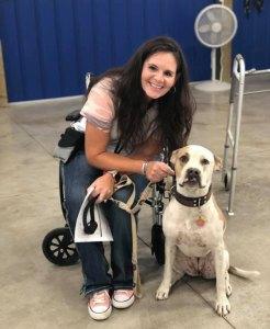 therapy dog team spokane wa