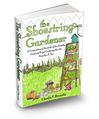 The Shoestring Gardener
