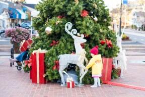 Christmas in Tiburon