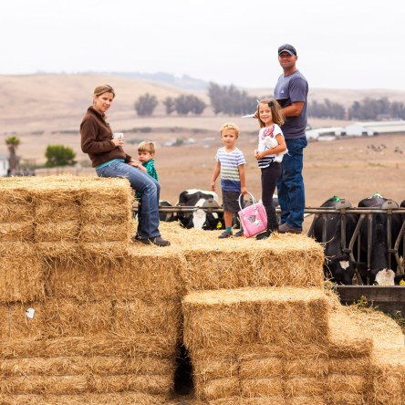 Fun on the hay bales